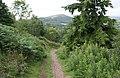 Path down from Pinnacle Hill - geograph.org.uk - 1419416.jpg