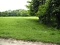 Path through the grass - geograph.org.uk - 457519.jpg
