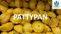Pattypan - Wikimedia Nederland Conferentie - 4 november 2017.pdf
