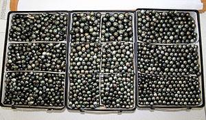 Tahitian pearl - Tahitian pearls in bulk