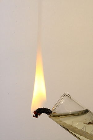 vegetable oil burning on a wick