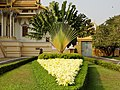 Phnom Penh Tevea Vinichhay 09.jpg