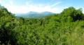 Pic de Cagire depuis le Mont Jammes à Miramont de Comminges.png