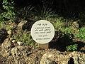 PikiWiki Israel 40584 Memorial plaque in Kibbutz Beit Haemek.JPG