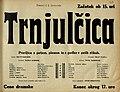 Plakat za predstavo Trnjulčica v Narodnem gledališču v Mariboru 1. januarja 1934.jpg
