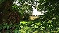 Planches Orne Normandie Le Bois Brunel La Motte 61 2017 05.jpg