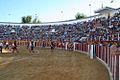 Plaza de toros de Manzanares.jpg