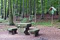 Poisenwald-SteinernerTisch.jpg