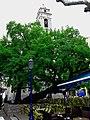 Porto-Vecchio arbre, terrasse et église.jpg