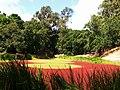 Portola Pond - panoramio.jpg
