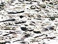 Pozzuoli, la solfatara (17862242410).jpg