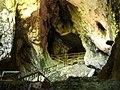 Predjama castle cave.JPG