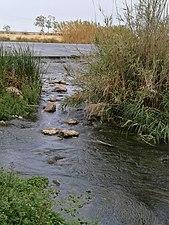 Presa del río Júcar cerca de Fortaleny.jpg