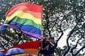 Pride flag in front of trees.jpg