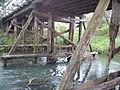 Prosna river Przystajnia.jpg