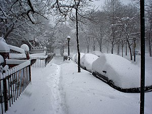 Geography of New York City - Deep snow in Brooklyn during the Blizzard of 2006 Nor'easter