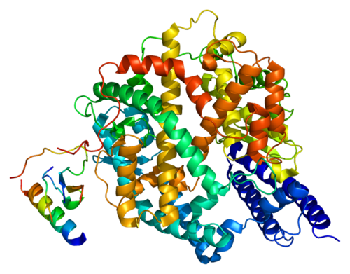 500px-Protein_ACE2_PDB_1r42.png
