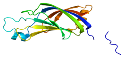 Protein PRKCH PDB 2fk9.png
