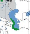 Proterorhinus nasalis map.png