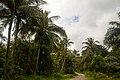 Pulau Ubin - panoramio (1).jpg