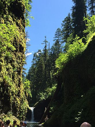 Punch Bowl Falls - July afternoon in Punchbowl Falls