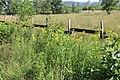 Réserve naturelle Marais Lavours Aignoz Ceyzérieu 59.jpg