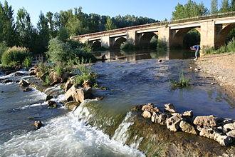 Cea (river) - The Cea River as it runs through Mayorga.