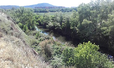 Río Henares 2.jpg