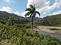 Río Toa 8.jpg