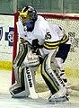 RPI vs. Michigan ice hockey 2014 27.jpg