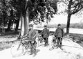 Radfahrerpatrouille mit Körben für Brieftauben am Rücken - CH-BAR - 3240466.tif