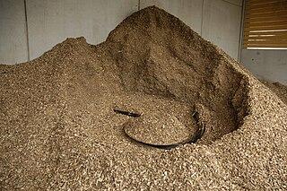 Biomass heating system generates heat from biomass