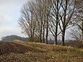 Rees-Esserden Spyckweg PM20-01.jpg