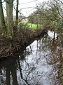 Reflections in Ell Brook - geograph.org.uk - 623967.jpg
