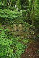 Remains of a wall, Lancaut Wood - geograph.org.uk - 812387.jpg