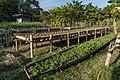 Repurposed pirogue as kitchen garden.jpg