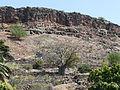 Ribeira Grande de Santiago-Baobab.jpg
