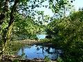 Rio Ulla - panoramio (4).jpg