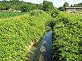 Rio di monale presso baldichieri.jpg