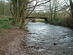 River Horner Bossington.jpg