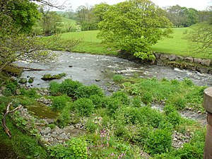 River Mint - Mint upstream of Mintsfeet