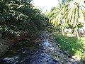 Rivière à Puerto Vallarta03.JPG