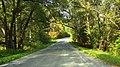 Road - panoramio (111).jpg