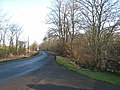 Road from Bolam to Belsay - geograph.org.uk - 685209.jpg