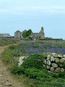 Ruin at Skomer Island - geograph.org.uk - 946085