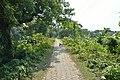 Rupnarayan Embankment Road - Mellock - Howrah 2014-10-19 9869.JPG