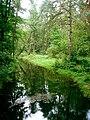 Rzeka Czarka.jpg