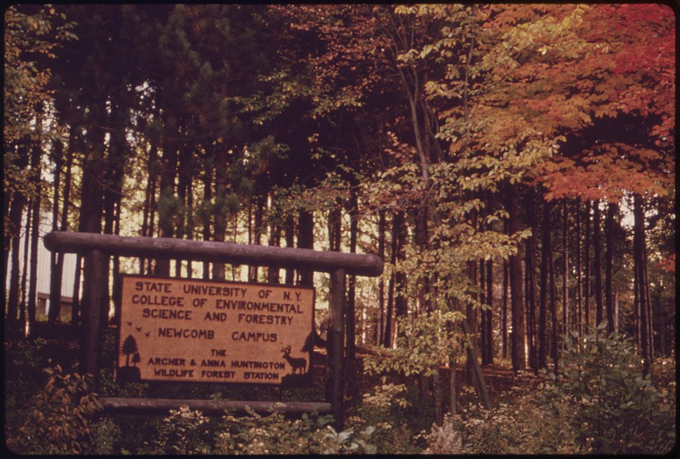 SIGN AT THE ENTRANCE TO THE STATE UNIVERSITY OF NEW YORK COLLEGE OF ENVIRONMENTAL SCIENCE AND FORESTRY IN THE... - NARA - 554693.jpg