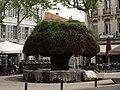 Salon-de-Provence - panoramio (1).jpg