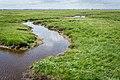 Saltholm - panoramio (27).jpg